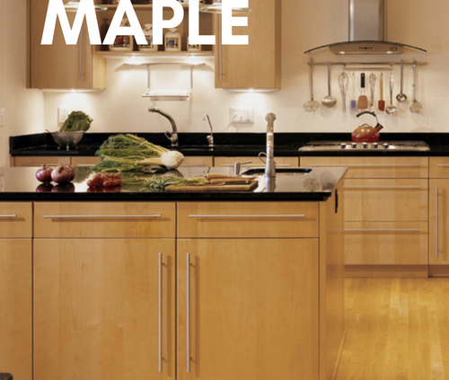 Are Painted Kitchen Cabinets Durable: Modern Maple Kitchen Cabinets